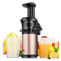 amzdeal slow masticating juicer