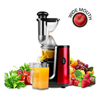 hornbill slow masticating juicer red