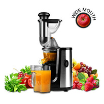 hornbill slow masticating juicer silver