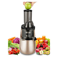 tiluxury wide chute juicer champagne